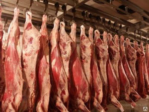 Мини-завод КМЗ-0201  для переработки мяса