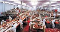 Мини-завод КМЗ-0203 переработка мяса